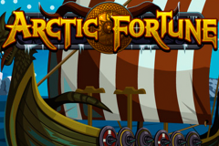 logo arctic fortune microgaming слот