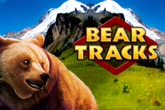 logo bear tracks novomatic слот