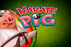 logo karate pig microgaming слот