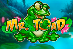 logo mr toad playn go слот