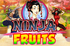 logo ninja fruits playn go слот