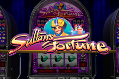 logo sultans fortune playtech слот