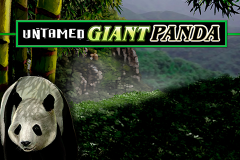 logo untamed giant panda microgaming слот