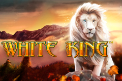 logo white king playtech слот