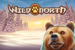 logo wild north playn go слот