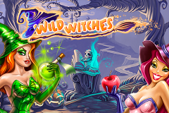 logo wild witches netent слот