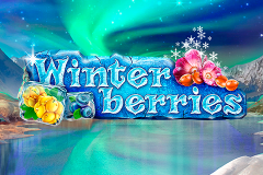 logo winterberries yggdrasil слот
